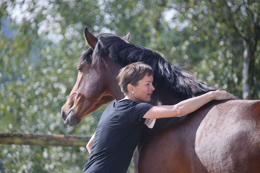 ALTER HORSE EQUICOACHING COACHING ETHOLOGIE CHEVAL