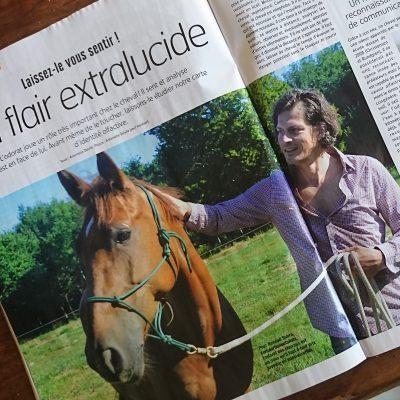 ALTER HORSE EQUICOACHING COACHING ARTICLE DE PRESSE RENAUD SUBRA