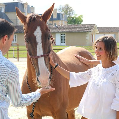 Séance Equicoaching Séminaire Renaud SUBRA Rouillac Alter Horse