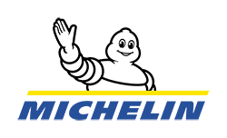 HORSE COACHING EQUICOACHING ALTER HORSE Michelin
