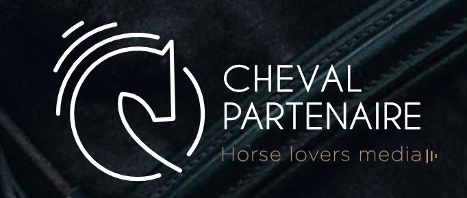 Alter Horse Coaching Cheval Partenaire
