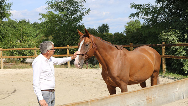 alter horse formation equicoaching formation efficacite personnelle