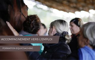 EQUICOACHING FORMATION ACCOMPAGNEMENT VERS L'EMPLOI