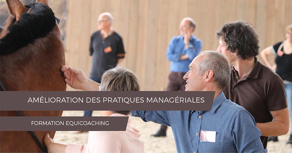 EQUICOACHING AMÉLIORATION DES PRATIQUES MANAGERIALES
