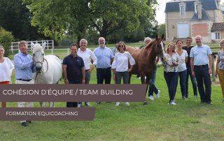 EQUICOACHING FORMATION COHÉSION D'ÉQUIPE TEAM BUILDING CHEVAUX