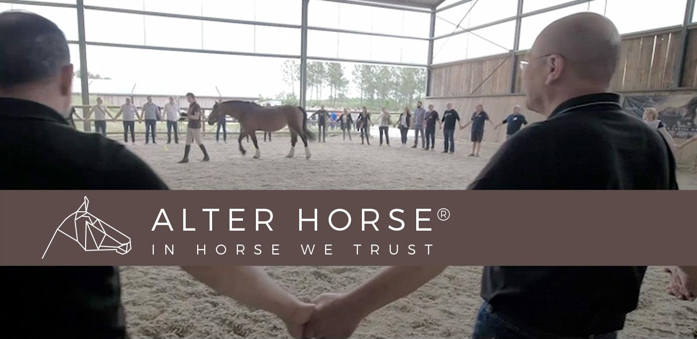 Alter Horse Equicoaching Horse Coaching Renaud SUBRA Leadership Cohésion d'équipe