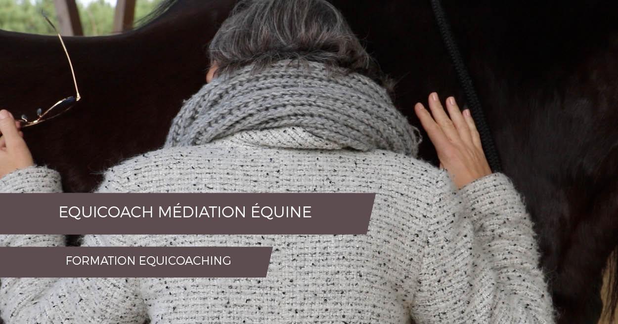 FORMATION EQUICOACH EQUICOACHING