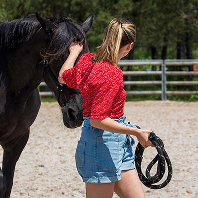 EQUICOACHING HORSE COACHING